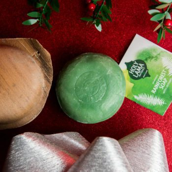 Eco Soap with christmas background