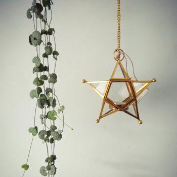 Star shaped hanging tea light holder