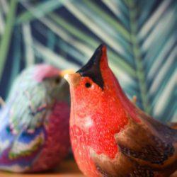 Red cardinal and purple bird